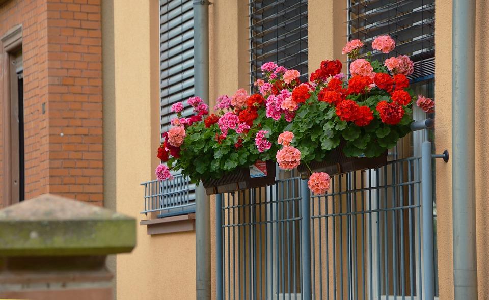 Die Kunst, Blumenkästen zu installieren
